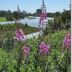 Be One with Nature in Calgary's Best Kept Secret