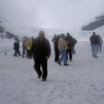 Jasper's Icefields have Counted the Centuries