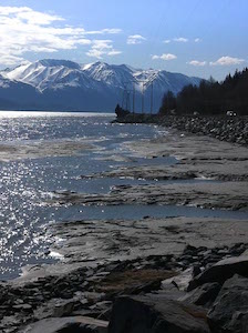 cook_inlet