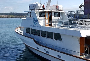 marine_discovery_tours_boat