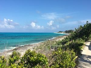 beach_reef_atlantic_ocean