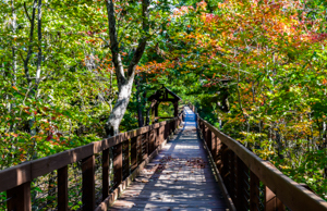 csp_bald_rock_trail_boardwalk_al
