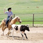 Working Cattle Ranch: Ideal Family Vacation with Young Adult Kids
