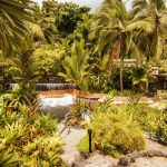 The Best Volcanic Hot Spring Resort in Costa Rica