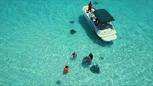 drone_footage_stingray_city