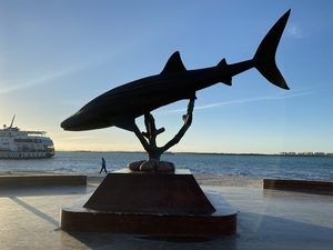 Shark Statue, by Anderson
