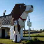 Play, Sit, and Stay at the Dog Bark Park