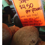 From A Box of Cucumbers to Rows of Star Apples, Jackfruits, and Kumquats: The Story Behind Florida's Finest Fruit Stand