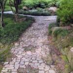 Shanghai's Fine Gardens