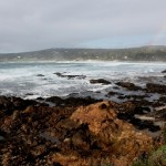 A Day in Carmel-by-the-Sea