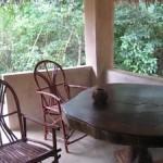 Kitschy Beach Hostel on Kenya's Coast Showcases Local Wildlife and Offers Tree House Living