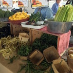 The Sumter County Farmers Market: A Visit to the Heart of Florida