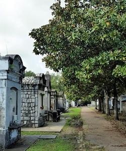 magnolia_lined_avenue_lafayette_Cemetery LR