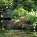 Escape to a Fairyland at Alfred Nicholas Memorial Gardens