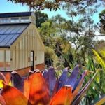 Bees, Art, and Surprises at Sydney's Botanic Garden