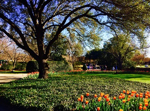Take A Day Trip To The Dallas Arboretum And Botanical Garden