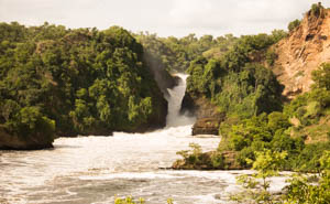 Murchison falls BY JACKSON